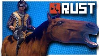RACING HORSES in RUST