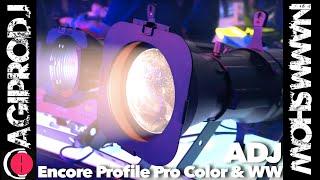 Take a look ADJ AMERICAN DJ ENCORE PROFILE PRO COLOR 250 Watt RGBWAL LED Engine Ellipsoidal Gobo Projector in action - video 1