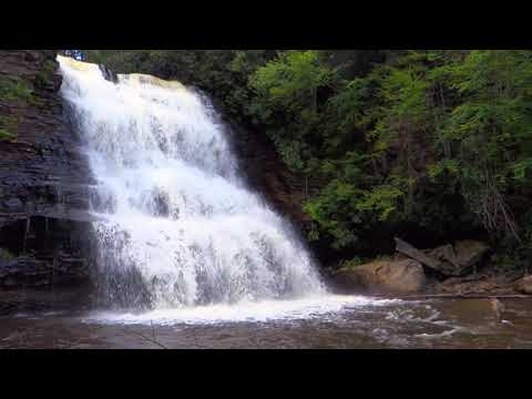 Relaxing by waterfall with calm birds sound