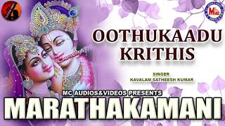 Marathakamani |  Hindu Devotional Classical Song | Krishna Devotional Song