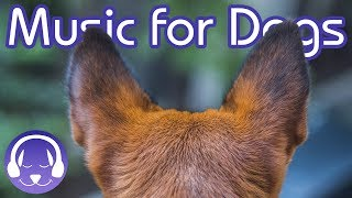 Relaxing Music For Dogs: 8 Hours of The Best Dog Sounds! (2019!)