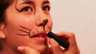 How to Make a Cat's Nose & Whiskers With Makeup : Face Painting and Makeup