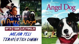 Angel Dog (El Perro Ángel) (Hay seres que son únicos)