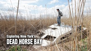 Dead Horse Bay - A scavenger's dream