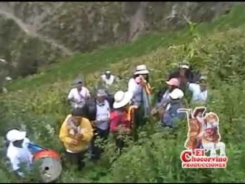 CARNAVAL SANTIAGO CHOCORVOS 2012 - los chupachis