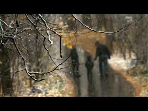 Сергей Трофимов - Не моя вина (Ветер в голове)