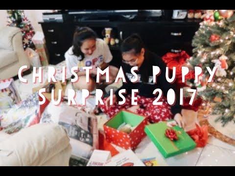 CHRISTMAS PUPPY SURPRISE 2017 *Emotional* | Best Surprise EVER!!!