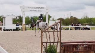 Zoe Schiefer & Illumination | Modified 1st Place - Green Horse