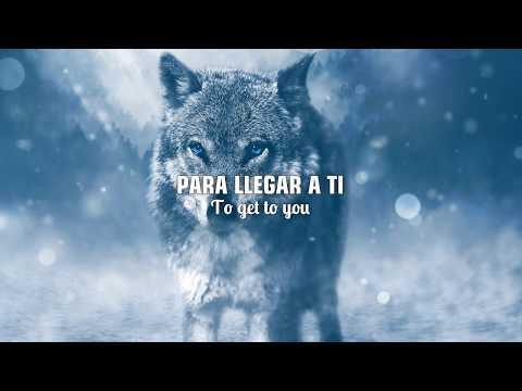 SELENA GOMEZ & MARSHMELLO - WOLVES |LETRA EN INGLÉS Y ESPAÑOL