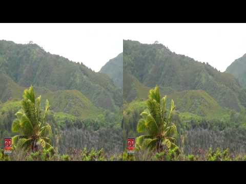 3D Video Hawaii Nature Scene - 3D Video Everyday N°51