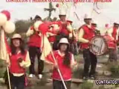 Los picaflores carnaval de santiago de chocorvos