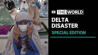 Delta Disaster: The World special edition   ABC News