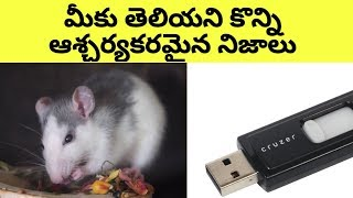 Top 12 Unknown Facts in Telugu || Intersting and Amazing Facts || Infi Feed