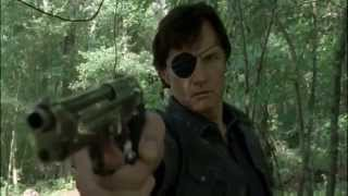 The Walking Dead - Season 4   Not Afraid (Music Video)