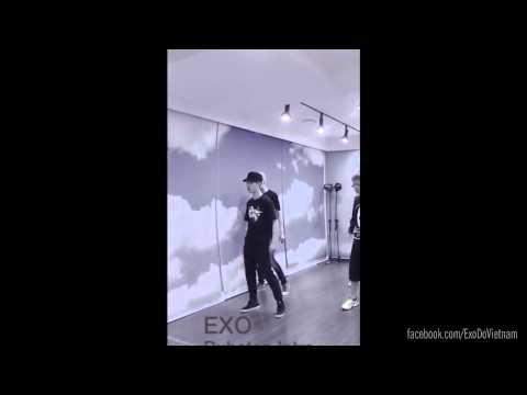 D.O. Dance focus - EXO Intro Dubstep