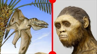 Laziness Causes Extinction & New Pterosaur  - 7 Days of Science