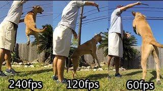 GoPro Hero3 Black - 60fps vs 120fps vs 240fps - GoPro Tip #108