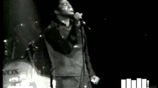"James Brown performs ""Bewildered"" at the Boston Garden (Live)"
