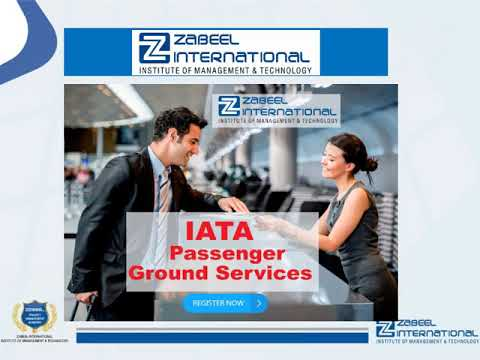 What is a passenger service agent? Passenger service agent