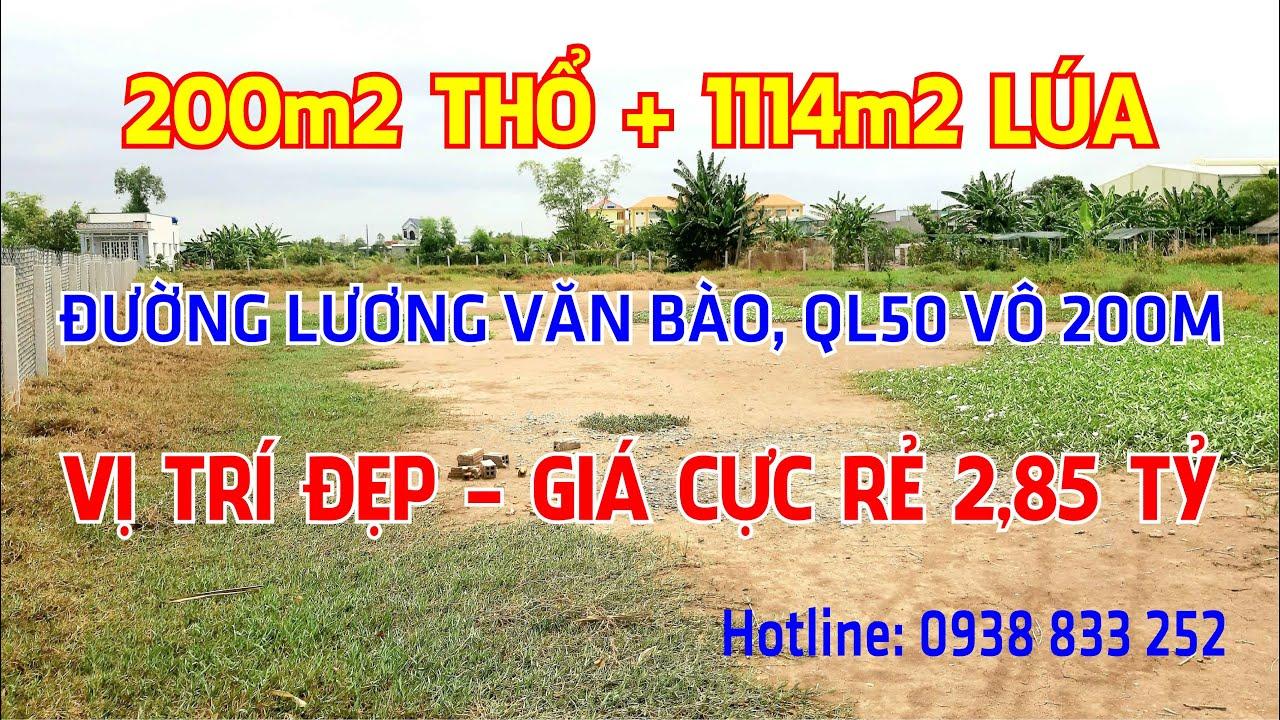 (Giá thật - đất thật). Bán gấp 200m2 thổ+1114m2 lúa đường Lương Văn Bào, giá 2,85 tỷ QL50 vào 200m video