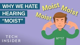 Science Of Why People Hate The Word 'Moist'