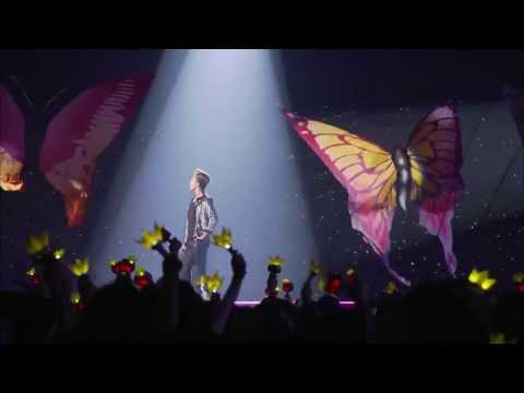 G DRAGON 2013 OOAK JAPAN DOME - BUTTERFLY FULL VER