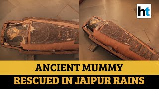 2,400-year-old mummy unboxed after 130 years in Rajasthan..
