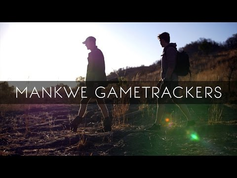 Mankwe Gametrackers - Pilanesberg National Park