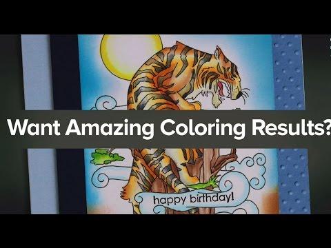 Chameleon Color Cards Nature