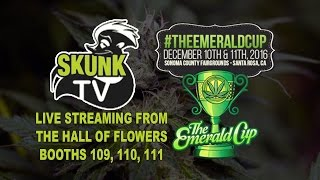 Dripworks On Skunk TV At The Emerald Cup 2016