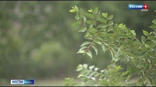 На Омск надвигаются дожди и грозы
