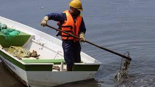 Hà Nội bắt đầu thí điểm làm sạch sông Tô Lịch