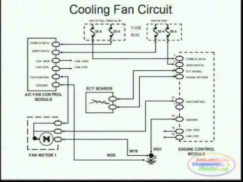 cooling fans wiring diagram youtube. Black Bedroom Furniture Sets. Home Design Ideas