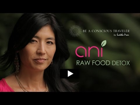 ANI PHYO | RAW FOOD DETOX - YouTube