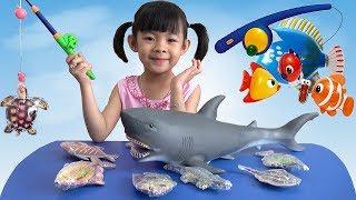 Trò Chơi Bé Câu Cá Trong Nhà ❤ AnAn ToysReview TV ❤