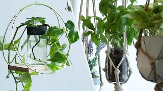 8 Fun Ways To Up Your Plant Game