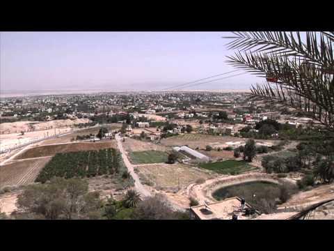 سماسرة يستغلون عاملات فلسطينيات في المستوطنات ماديا وجنسيا