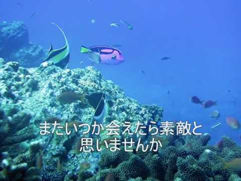 宇多田ヒカル HEART STATION at  Aquarium 歌詞付きCover