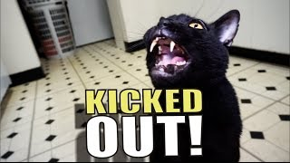 Talking Kitty Cat 51 - Kicked Out!
