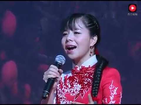 王二妮唱的这首歌太好听了