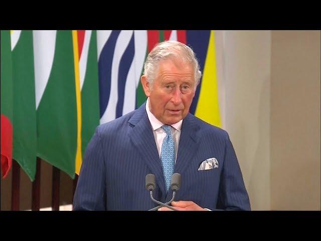 53成員國同意查爾斯接任大英國協元首