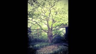 (Chillstep) Kaskade & Adam K Ft. Sunsun - Raining (Fred's Deep Remix)