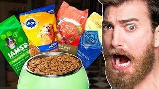 Best Dog Food Taste Test