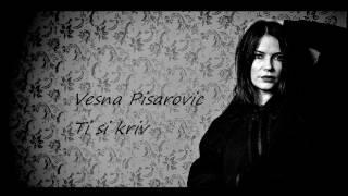 Vesna Pisarovic - Ti si kriv