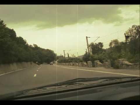 cicada executive on the highway
