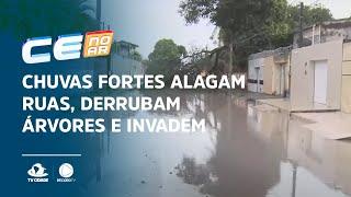 Chuvas fortes alagam ruas, derrubam árvores e invadem casas