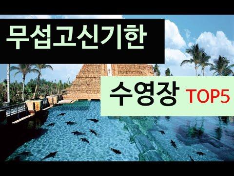 (랭킹박스)무섭고신기한 수영장 TOP 5