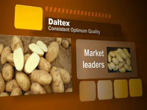 Daltex - Potatoes