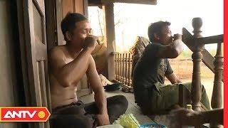 Loạn thần do rượu, hậu quả khôn lường cho gia đình và xã hội | SKMN | ANTV