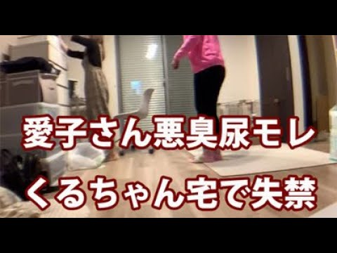 【恋する愛子さん】9/24:くるちゃん宅で失禁